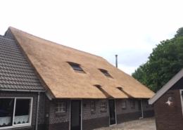 Rietdekwerkzaamheden Midden-Drenthe